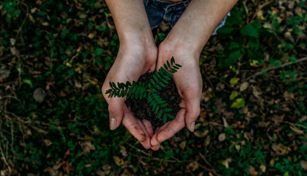 5 jednoduchých krokov k udržateľnému životu